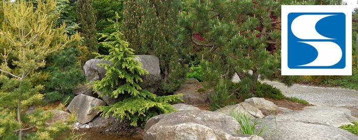 South Seattle Community College Campus Arboretum
