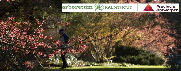 Arboretum Kalmthout